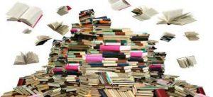 Consorzio di Bonifica Delta del Po Pubblicazioni-300x137 Pubblicazioni
