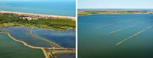 Consorzio di Bonifica Delta del Po Ambiente-1-300x114 Ambiente