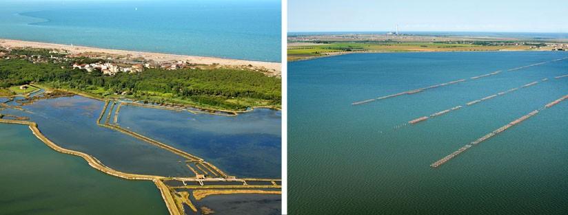Consorzio di Bonifica Delta del Po Ambiente-1 Ambiente