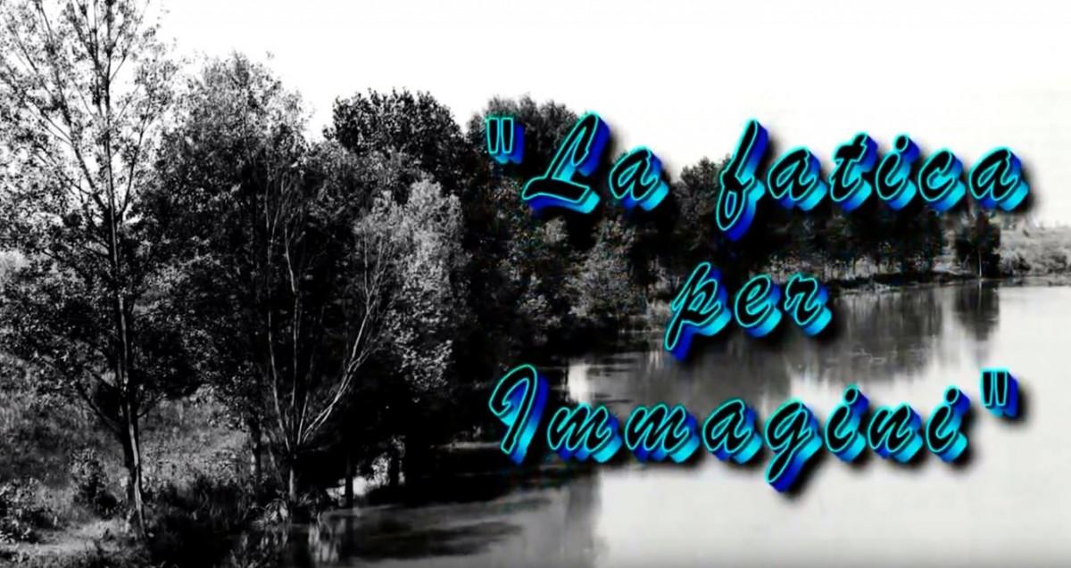 Consorzio di Bonifica Delta del Po La-fatica-per-immagini Video
