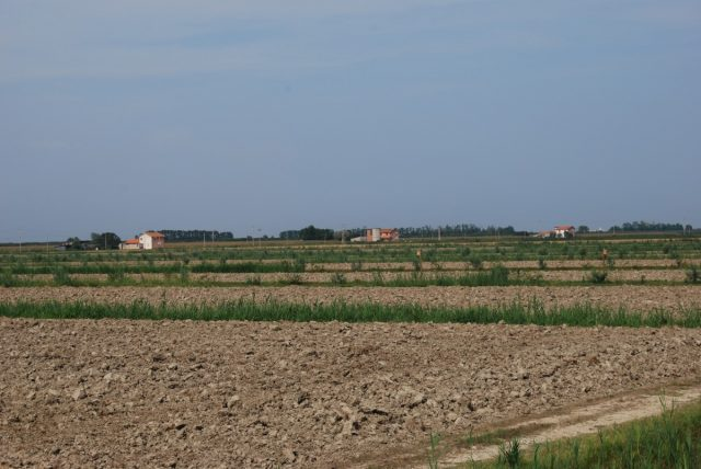 """Consorzio di Bonifica Delta del Po Scheda10_1_3-640x428 Intervento 10.1.3 """"Gestione attiva di infrastrutture verdi"""""""